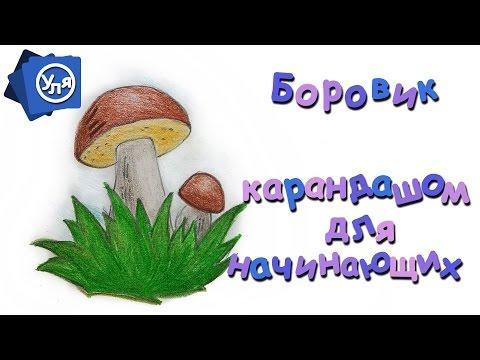 """Как нарисовать грибы // Рисунки карандашом для начинающих """"Боровик"""""""