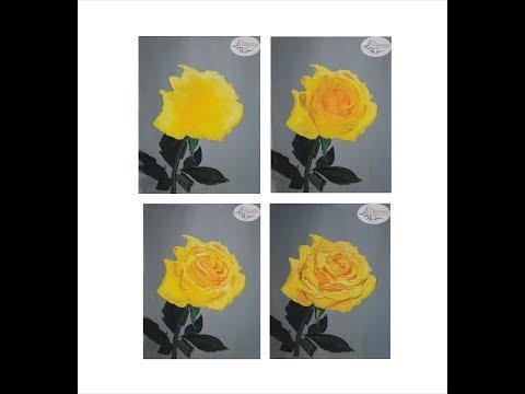 Желтая роза маслом поэтапно. Цветы маслом для начинающих
